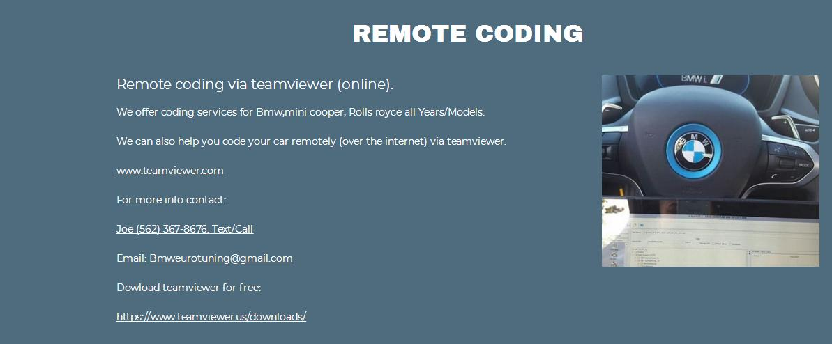 Bmw Coding Remote Teamviewer  - N54Tech com - International Turbo